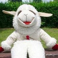 Profile picture of Lambchop